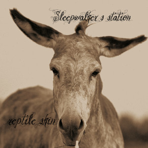 sleepwalkerstation-repitle-skin-cover-1024x1024